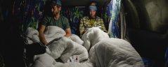 Fantastic 2 Campervan Africa